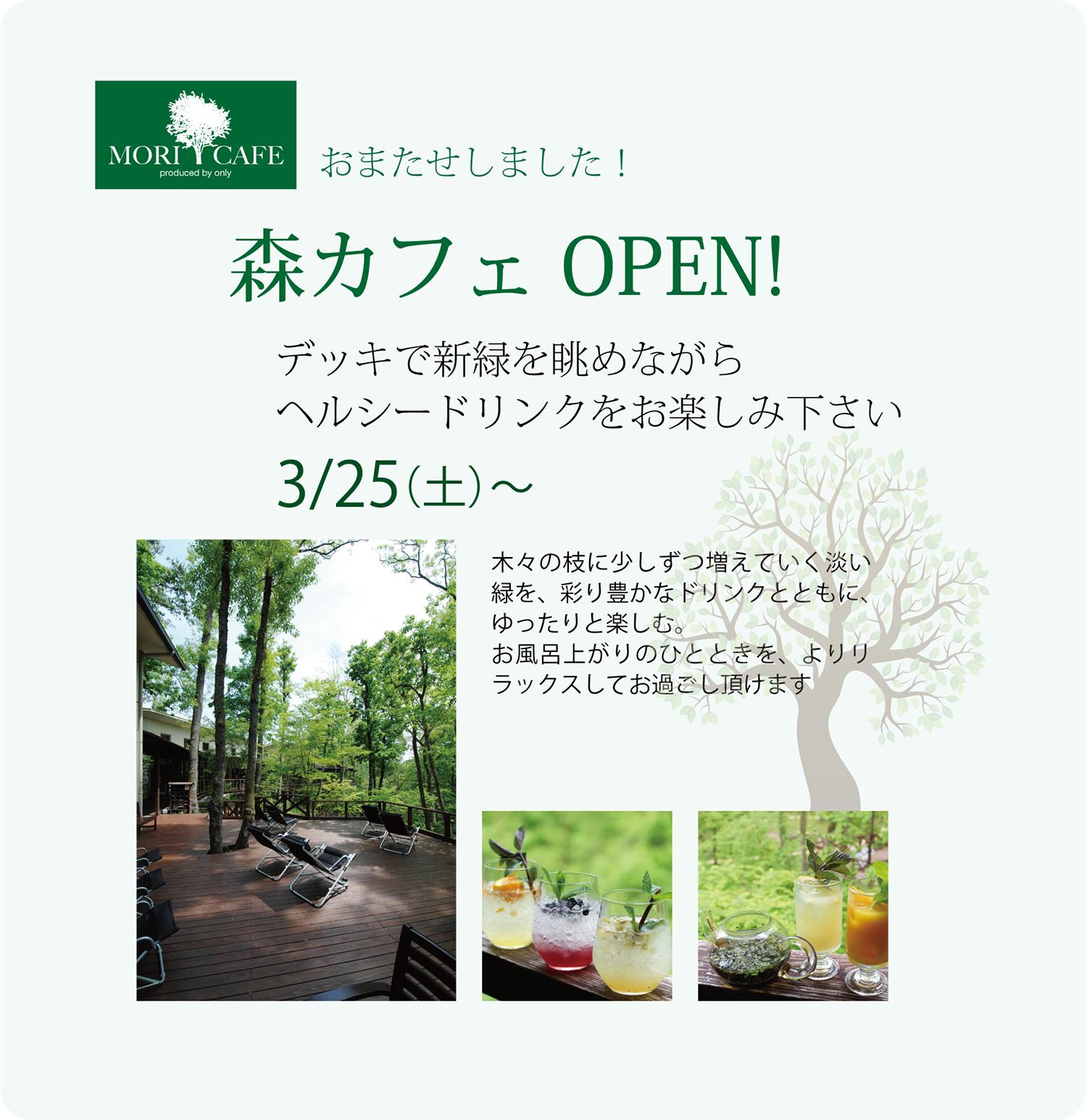 今年も森カフェがオープンします!