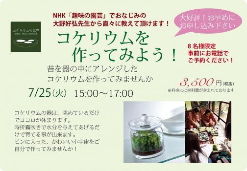 7月コケリウム講座開催!!