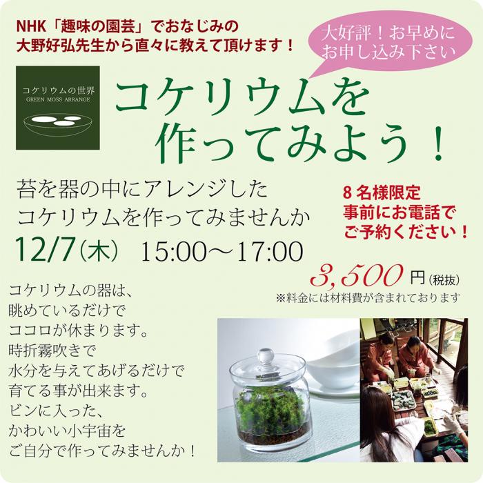 12月コケリウム講座開催!!