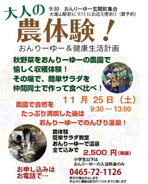 秋野菜収穫体験+温泉プラン!!